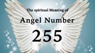 エンジェルナンバー255の数字の意味