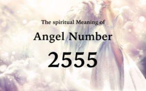 エンジェルナンバー2555の数字の意味