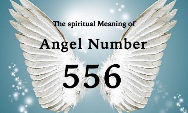 エンジェルナンバー556の数字の意味