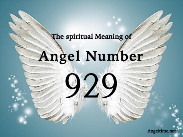 エンジェルナンバー929の数字の意味『スピリチュアルと現実とのバランス・変化への準備』