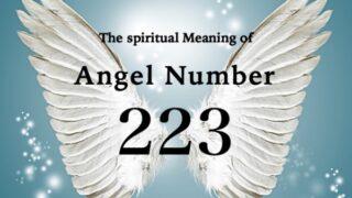 エンジェルナンバー223の数字の意味『あなたの創造性や情熱を刺激するような機会をつくりましょう』