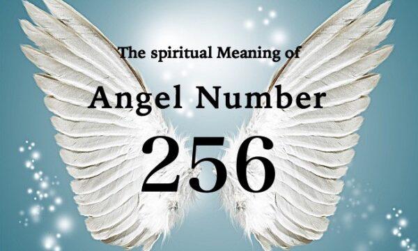 エンジェルナンバー256の数字の意味『あなたが変えようとしていることは、収入にプラスの影響を与える』