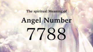エンジェルナンバー7788の数字の意味『あなたは正しい道を進んでおり、あなたの望む報酬がやってきています』