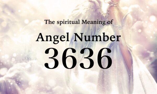 エンジェルナンバー3636の数字の意味『アセンデッドマスターが目的を達成するためのヒントを与えています』