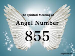 エンジェルナンバー855の意味「あなたの人生にとって重要な変化がやってきている」
